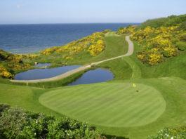 jpeg of 17th green at Wicklow Golf Club