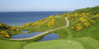 jpeg of 17th green at Wicklow Golf Club