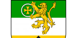 image of an Offaly crest
